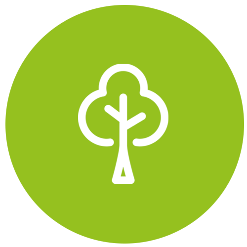 Für jeden Ökostromvertrag pflanzen wir einen Baum